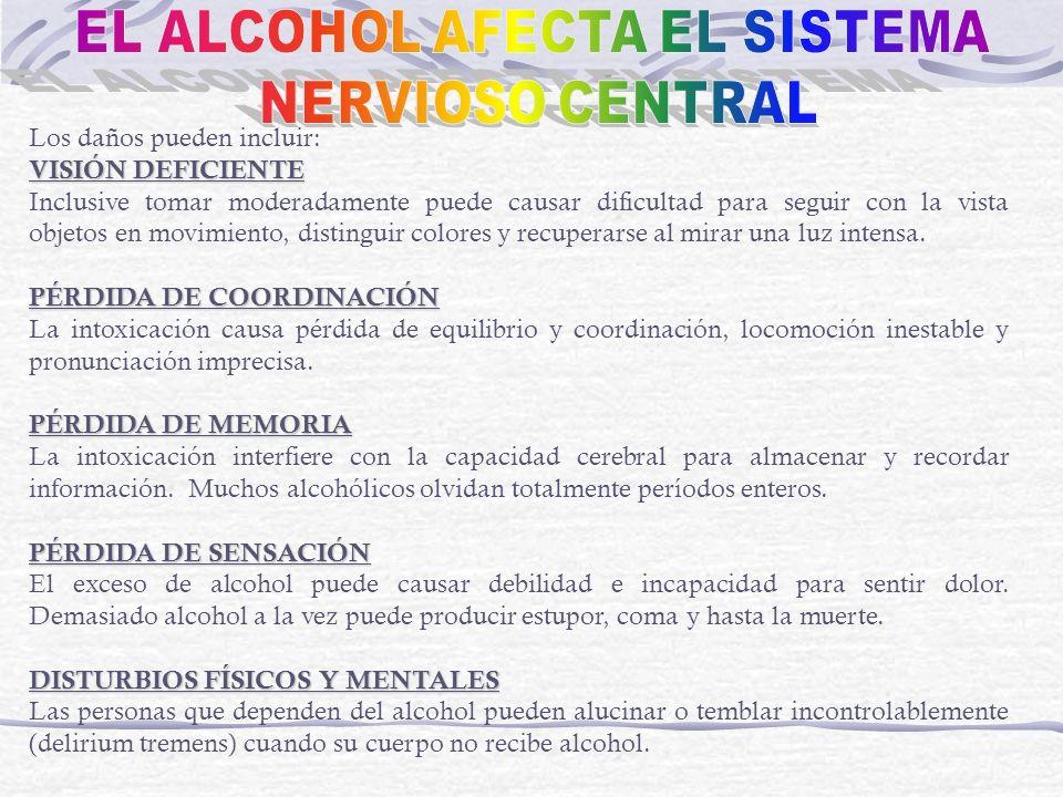 EL ALCOHOL AFECTA EL SISTEMA