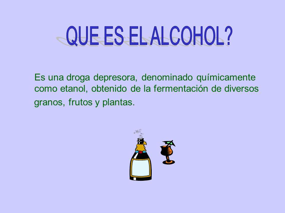 QUE ES EL ALCOHOL Es una droga depresora, denominado químicamente