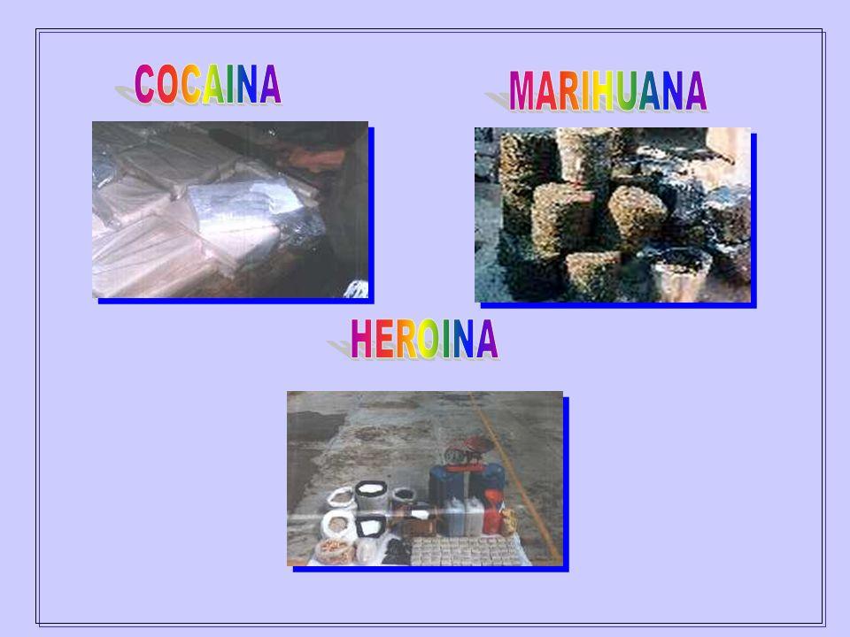 COCAINA MARIHUANA HEROINA