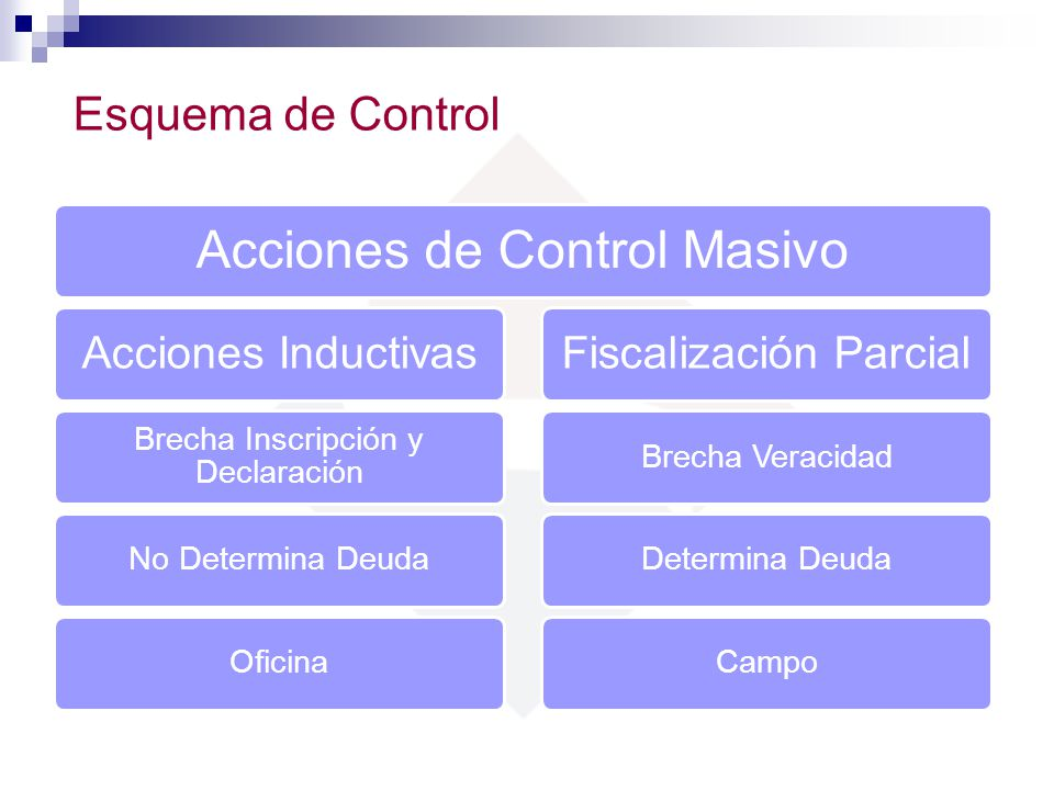 Acciones de Control Masivo