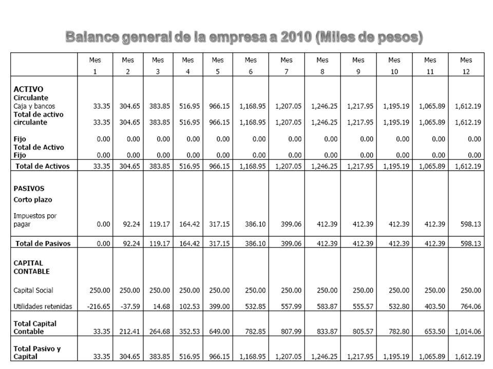 Balance general de la empresa a 2010 (Miles de pesos)