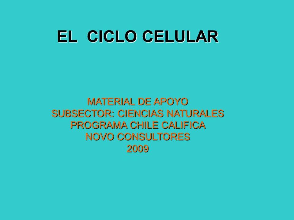 EL CICLO CELULAR MATERIAL DE APOYO SUBSECTOR: CIENCIAS NATURALES