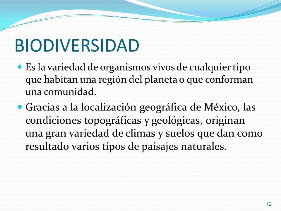 BIODIVERSIDAD Es la variedad de organismos vivos de cualquier tipo que habitan una región del planeta o que conforman una comunidad.