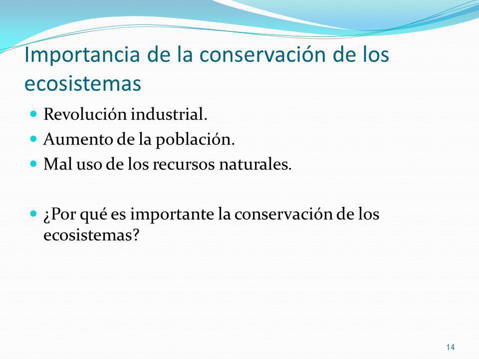 Importancia de la conservación de los ecosistemas