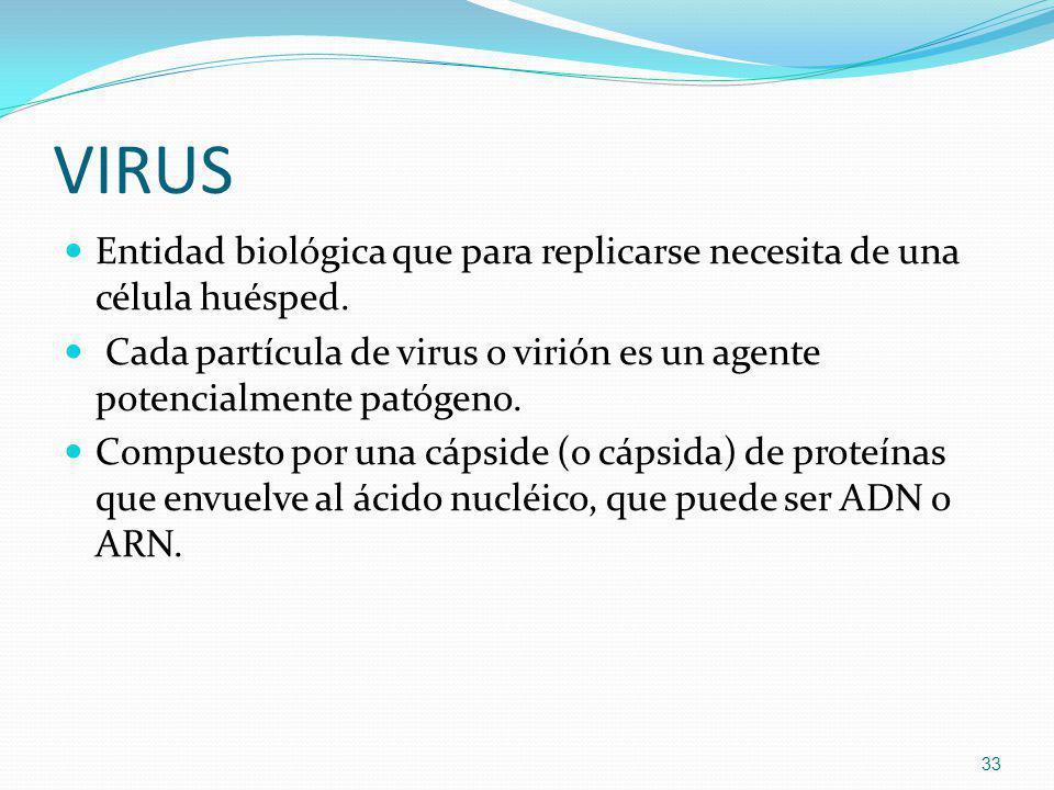 VIRUS Entidad biológica que para replicarse necesita de una célula huésped. Cada partícula de virus o virión es un agente potencialmente patógeno.