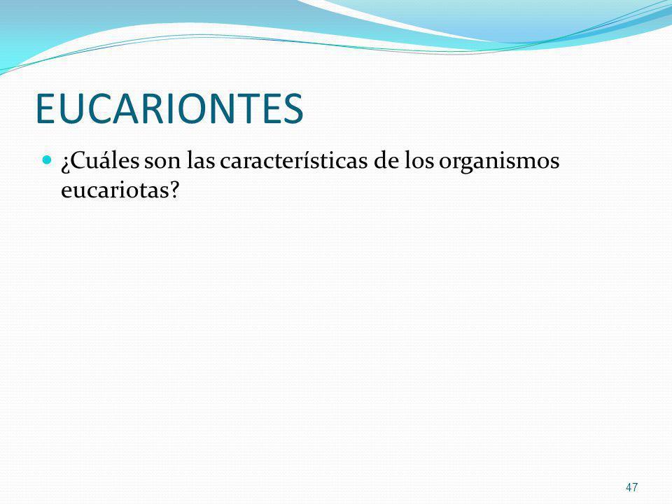 EUCARIONTES ¿Cuáles son las características de los organismos eucariotas