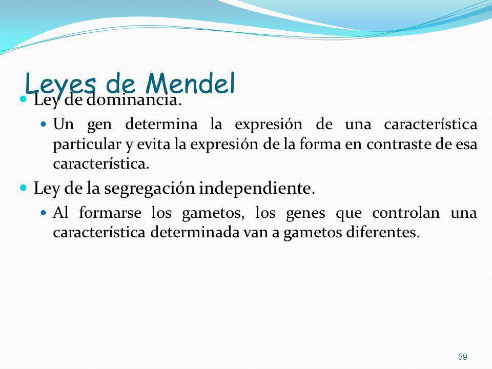 Leyes de Mendel Ley de dominancia.