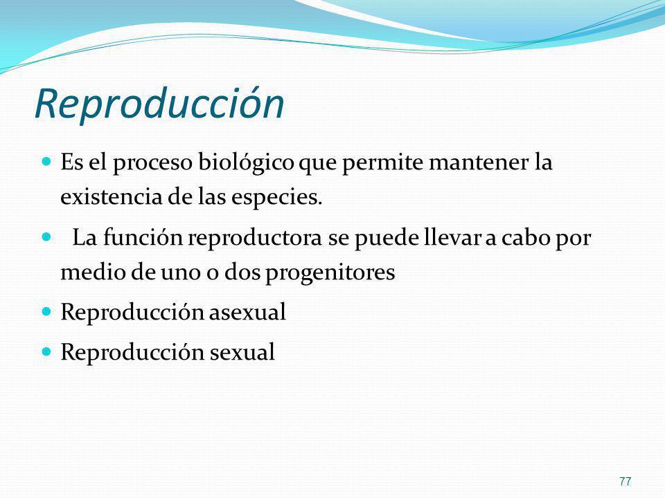 Reproducción Es el proceso biológico que permite mantener la existencia de las especies.