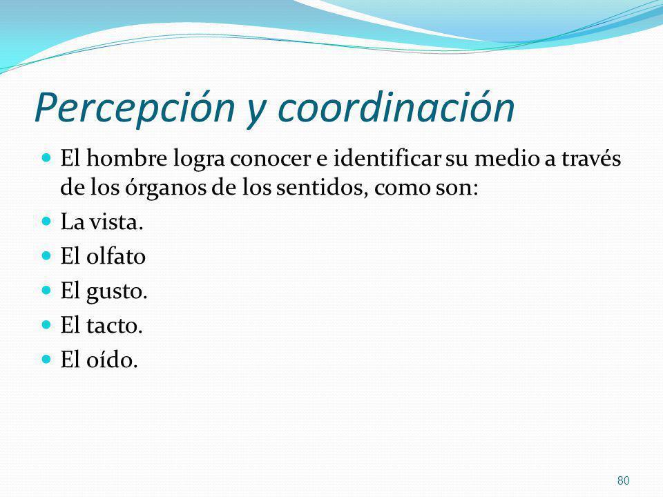 Percepción y coordinación