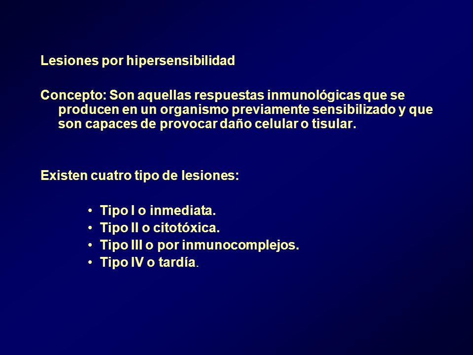 Lesiones por hipersensibilidad