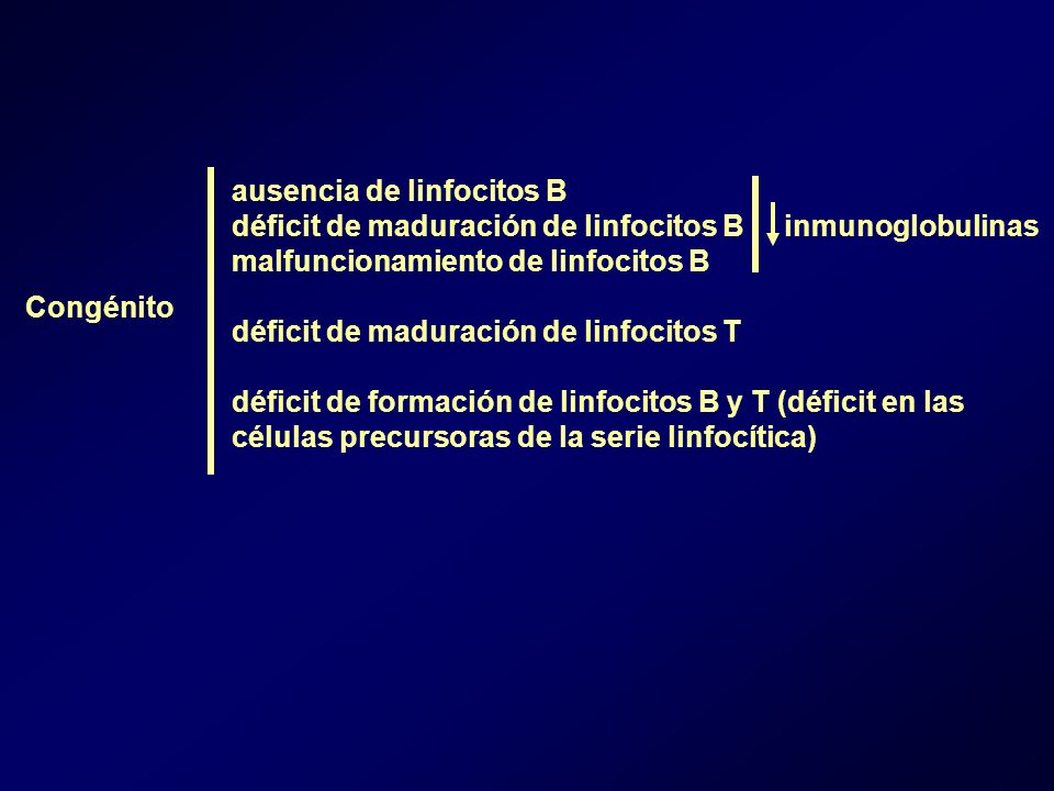 ausencia de linfocitos B
