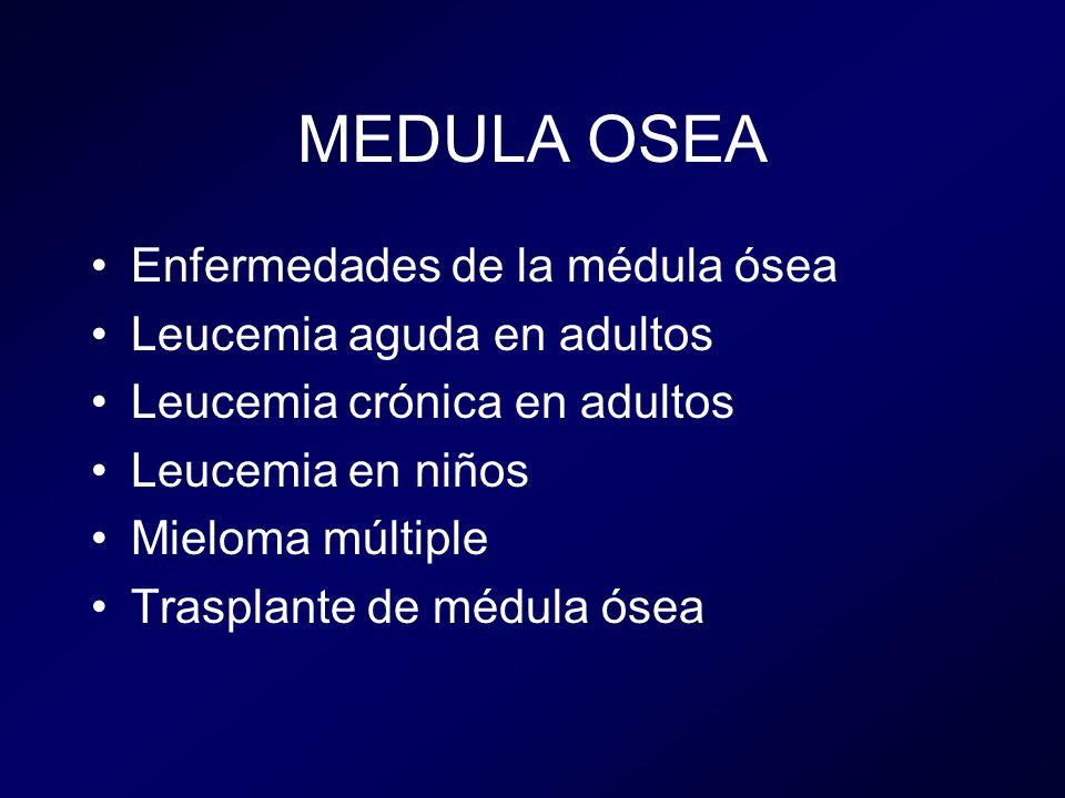 MEDULA OSEA Enfermedades de la médula ósea Leucemia aguda en adultos