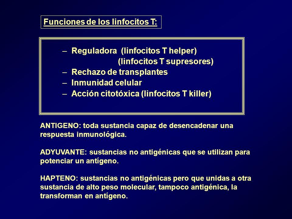 Funciones de los linfocitos T: