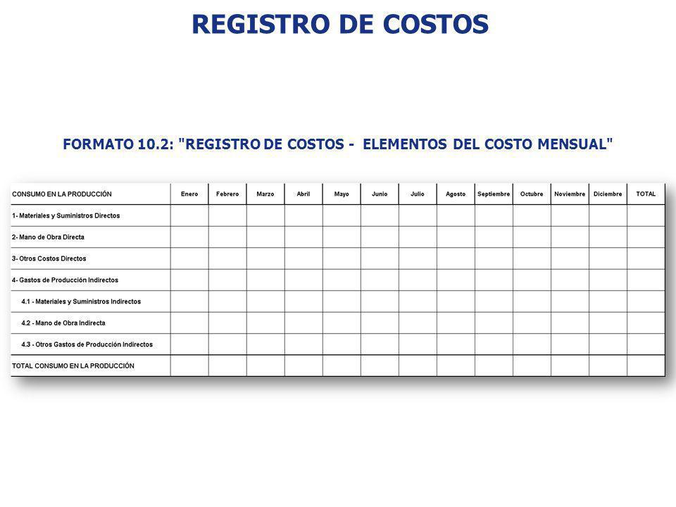 FORMATO 10.2: REGISTRO DE COSTOS - ELEMENTOS DEL COSTO MENSUAL