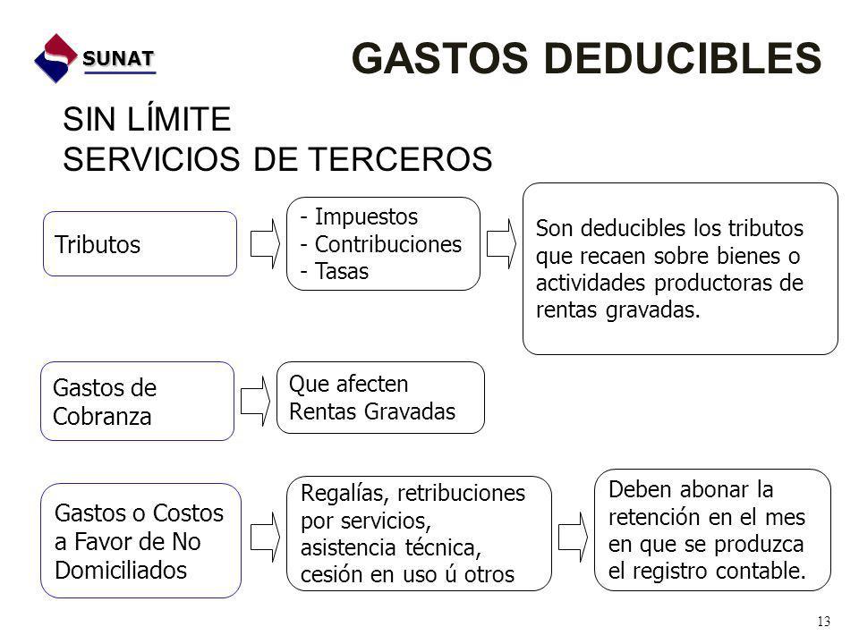 GASTOS DEDUCIBLES SIN LÍMITE SERVICIOS DE TERCEROS Tributos Gastos de