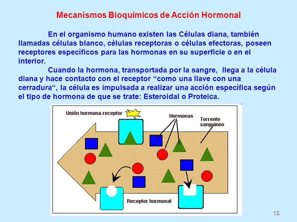Mecanismos Bioquímicos de Acción Hormonal