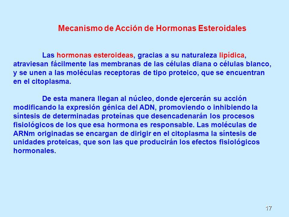Mecanismo de Acción de Hormonas Esteroidales