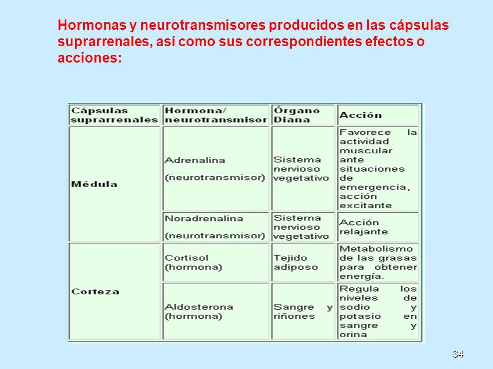 Hormonas y neurotransmisores producidos en las cápsulas suprarrenales, así como sus correspondientes efectos o acciones: