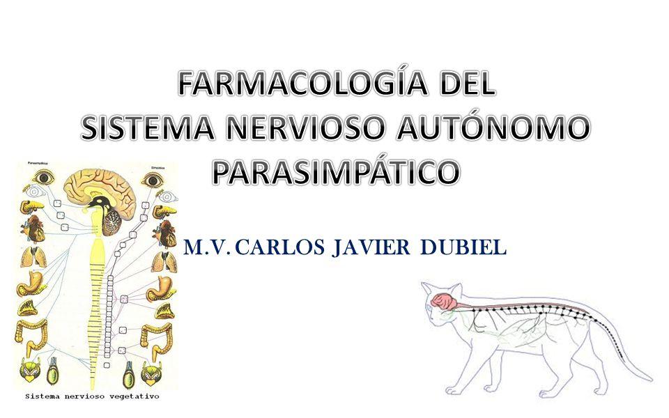 SISTEMA NERVIOSO AUTÓNOMO M.V. CARLOS JAVIER DUBIEL