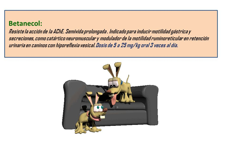 Betanecol: