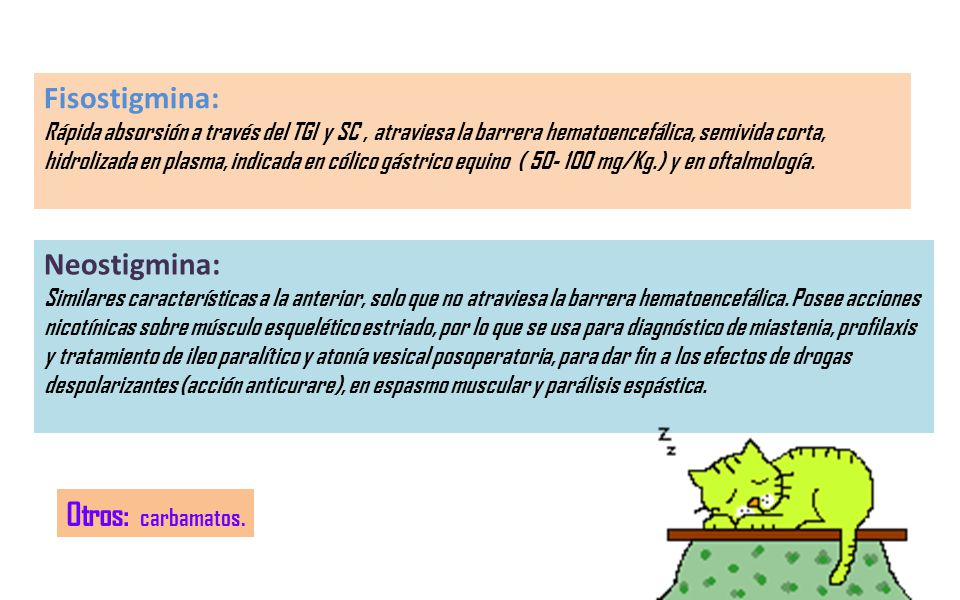 Fisostigmina: Neostigmina: Otros: carbamatos.