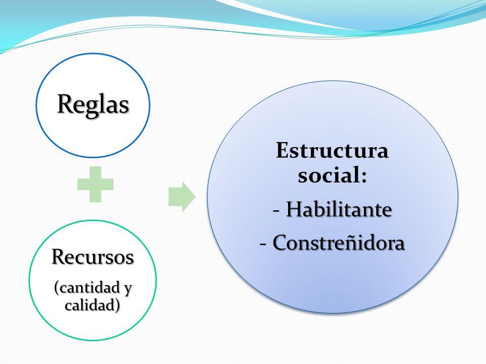 Estructura social: Recursos - Habilitante - Constreñidora