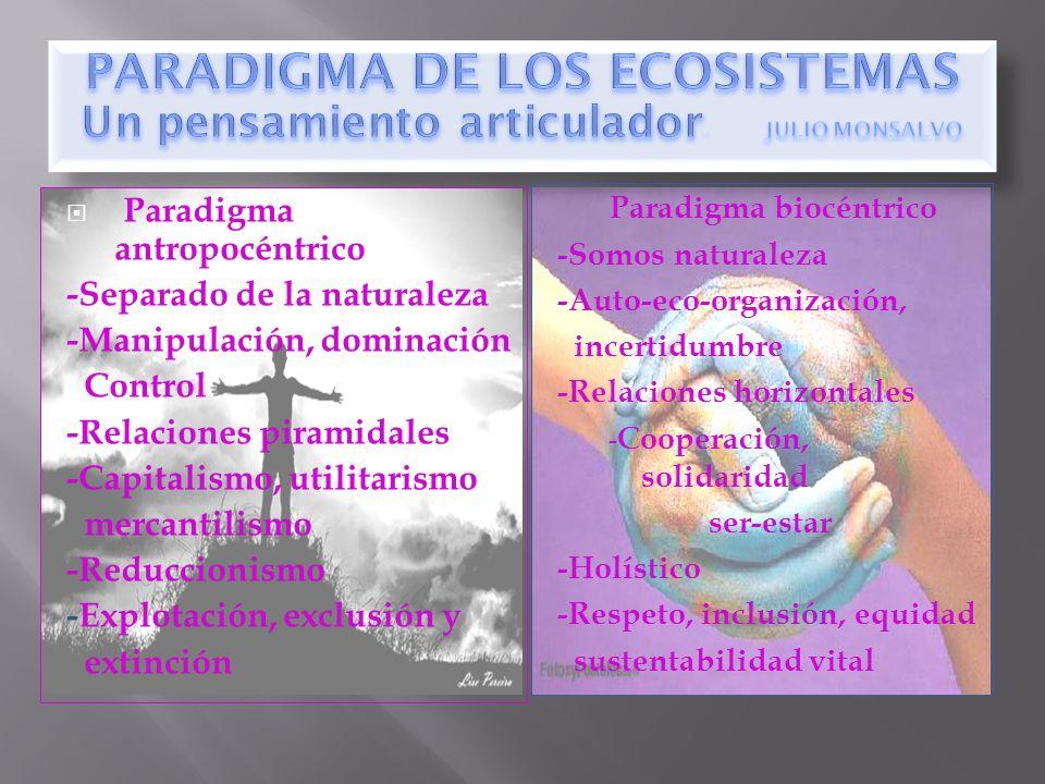 Paradigma biocéntrico