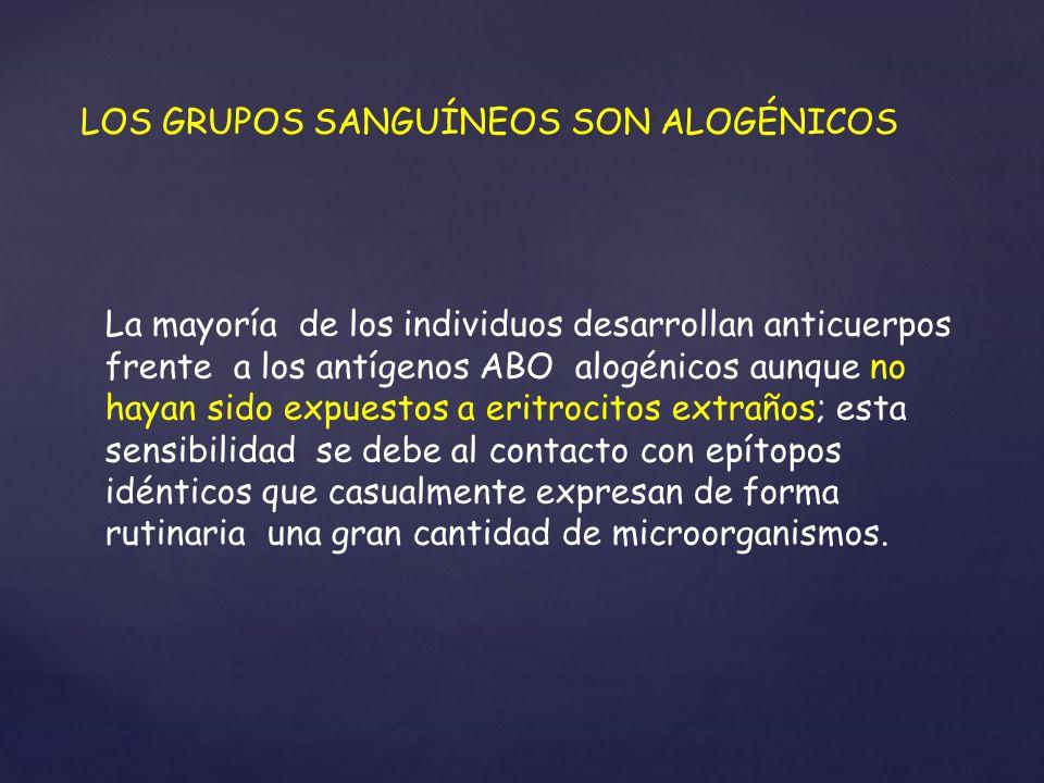 LOS GRUPOS SANGUÍNEOS SON ALOGÉNICOS