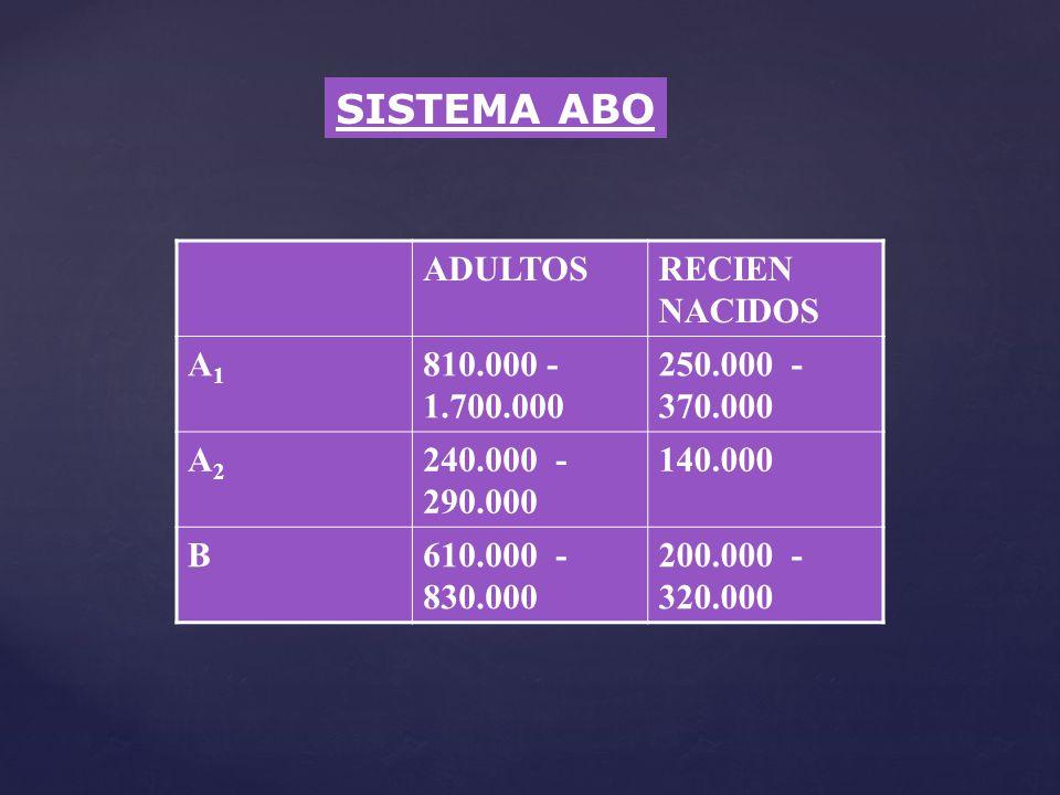 SISTEMA ABO ADULTOS RECIEN NACIDOS A1 810.000 - 1.700.000