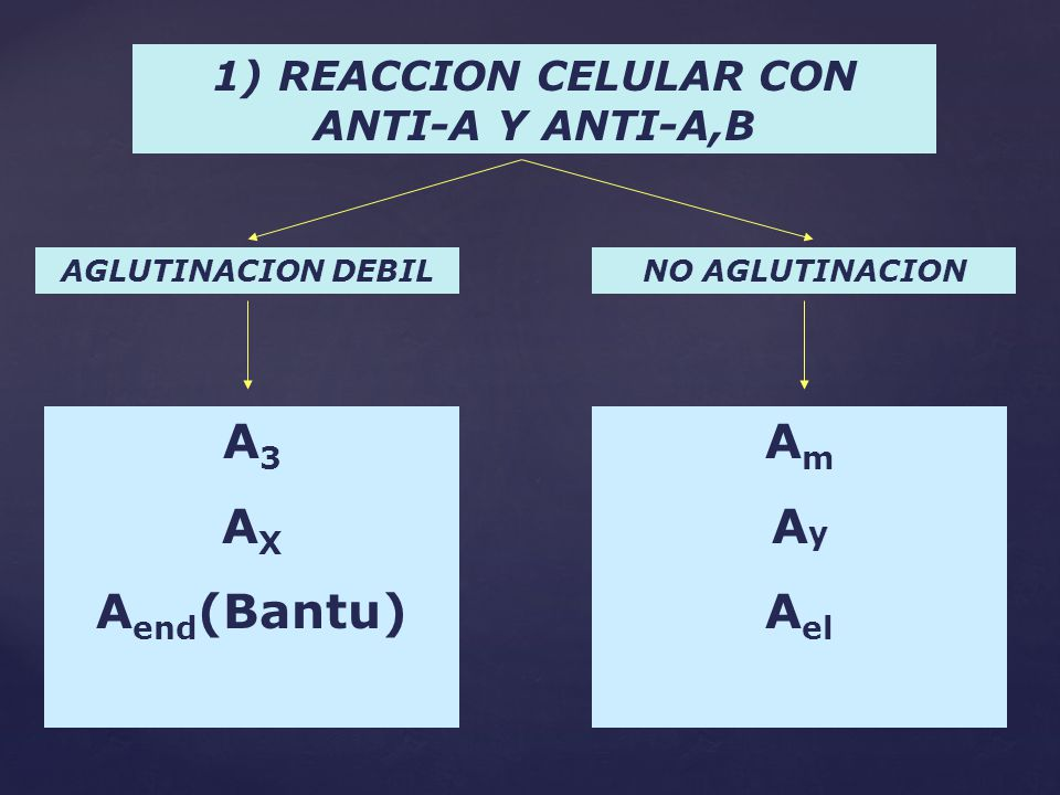 1) REACCION CELULAR CON ANTI-A Y ANTI-A,B
