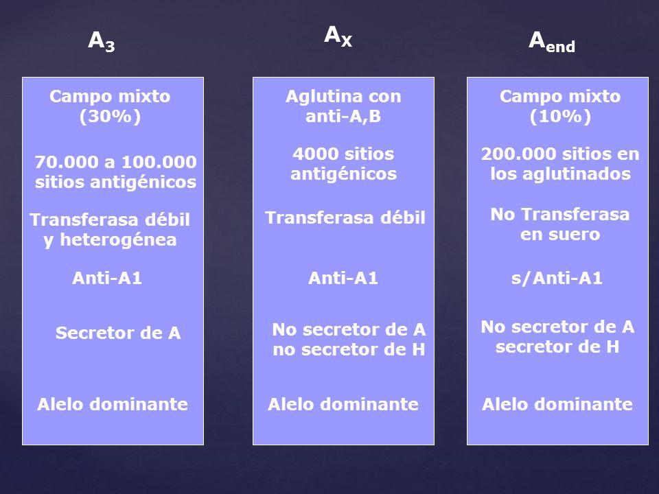 AX A3 Aend Campo mixto (30%) Aglutina con anti-A,B Campo mixto (10%)