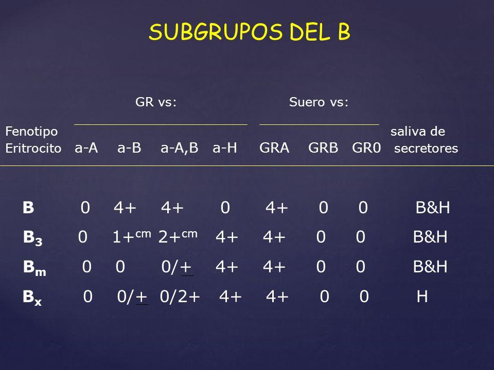 SUBGRUPOS DEL B B 0 4+ 4+ 0 4+ 0 0 B&H B3 0 1+cm 2+cm 4+ 4+ 0 0 B&H