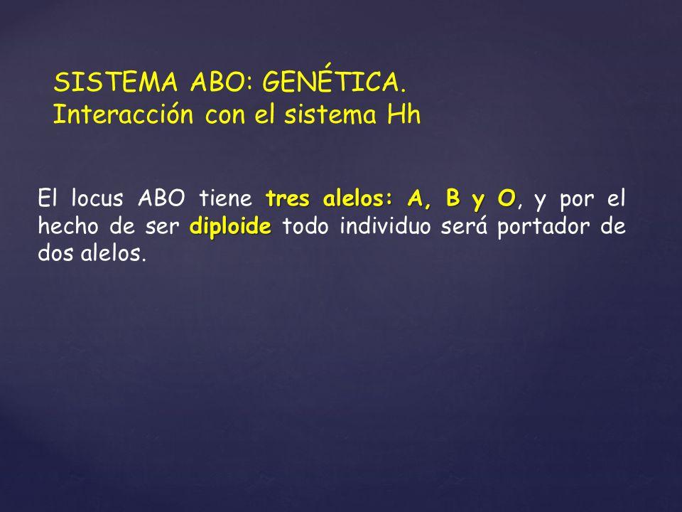 SISTEMA ABO: GENÉTICA. Interacción con el sistema Hh