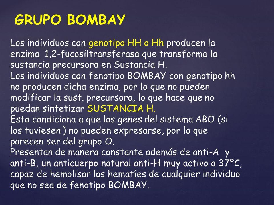 GRUPO BOMBAY Los individuos con genotipo HH o Hh producen la enzima 1,2-fucosiltransferasa que transforma la sustancia precursora en Sustancia H.