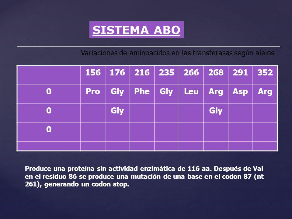 SISTEMA ABO 156 176 216 235 266 268 291 352 Pro Gly Phe Leu Arg Asp