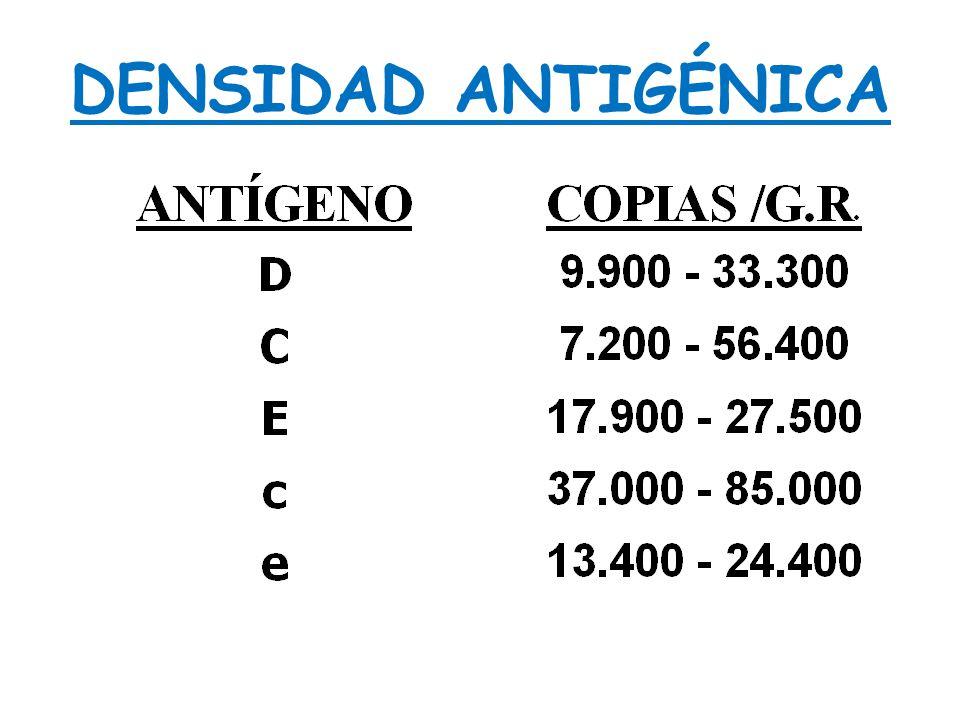 DENSIDAD ANTIGÉNICA