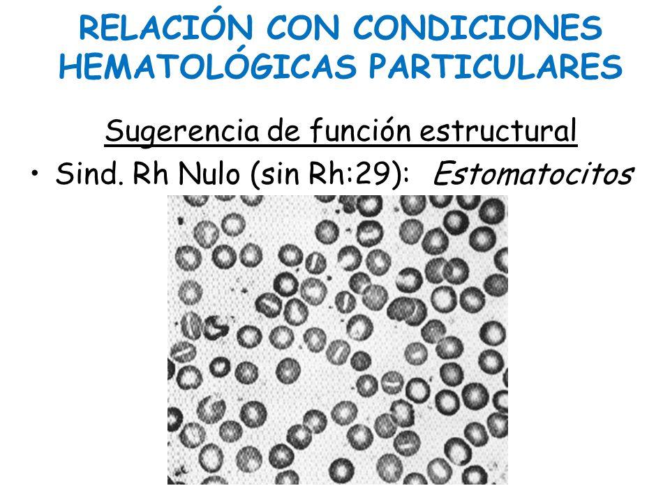 RELACIÓN CON CONDICIONES HEMATOLÓGICAS PARTICULARES