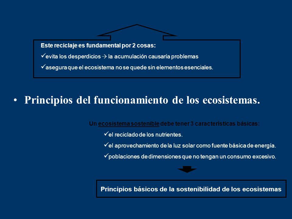 Principios básicos de la sostenibilidad de los ecosistemas