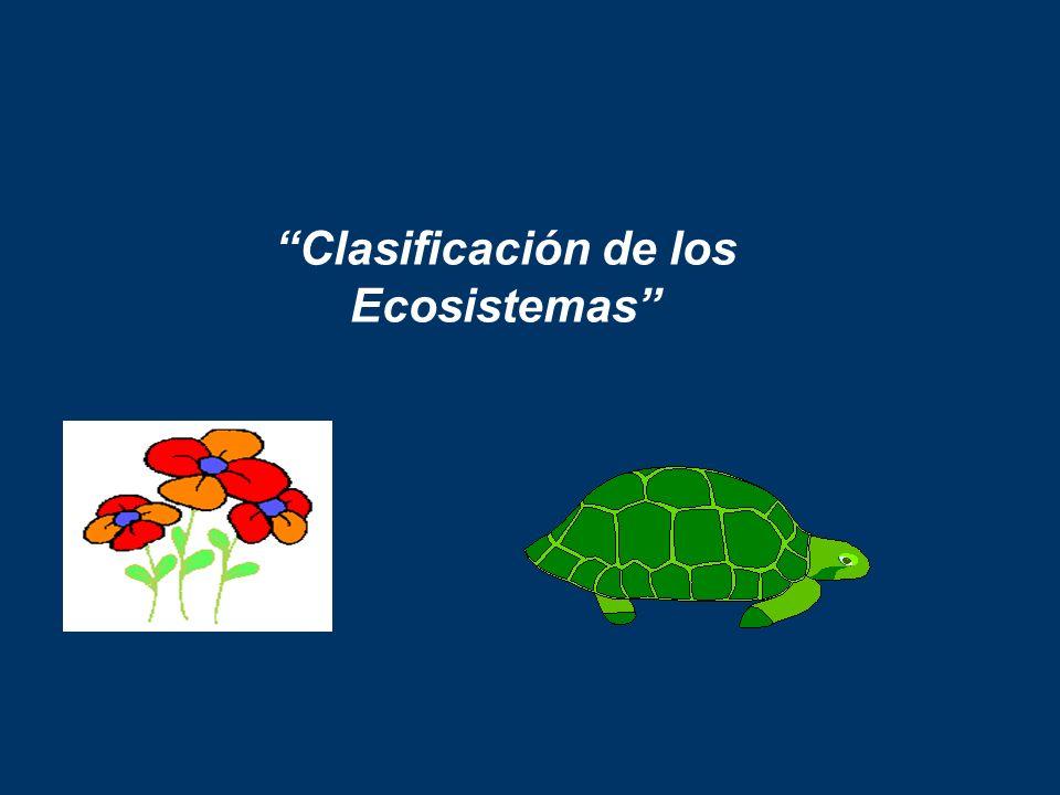 Clasificación de los Ecosistemas
