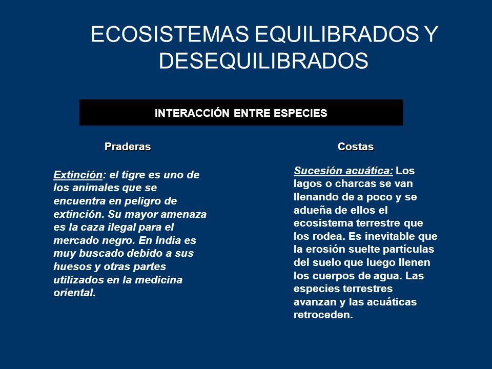 INTERACCIÓN ENTRE ESPECIES