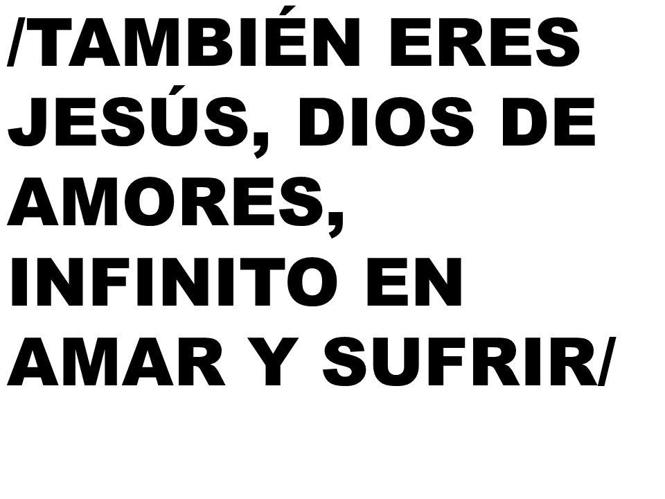 /TAMBIÉN ERES JESÚS, DIOS DE AMORES, INFINITO EN AMAR Y SUFRIR/