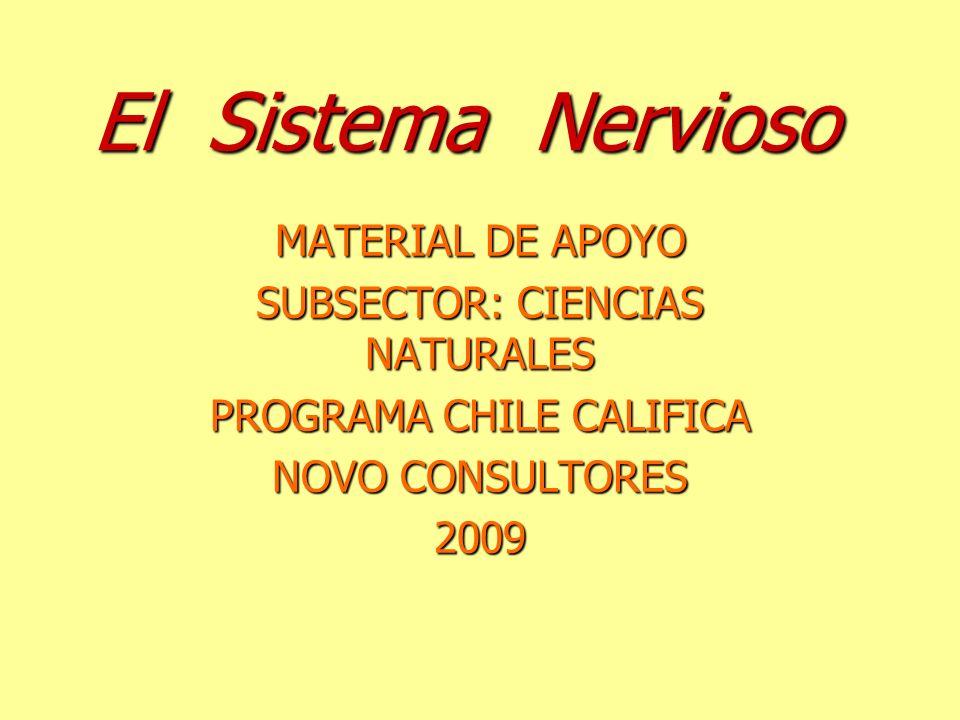 El Sistema Nervioso MATERIAL DE APOYO SUBSECTOR: CIENCIAS NATURALES