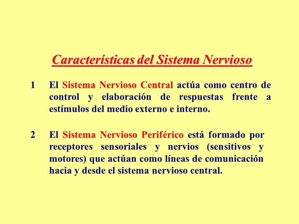 Características del Sistema Nervioso