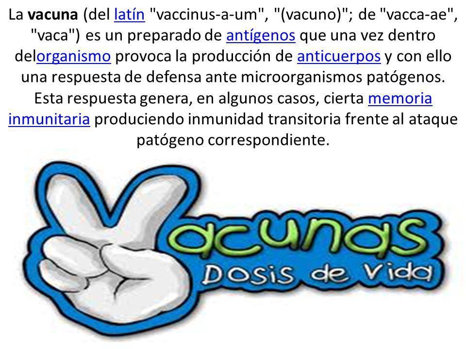 La vacuna (del latín vaccinus-a-um , (vacuno) ; de vacca-ae , vaca ) es un preparado de antígenos que una vez dentro delorganismo provoca la producción de anticuerpos y con ello una respuesta de defensa ante microorganismos patógenos.