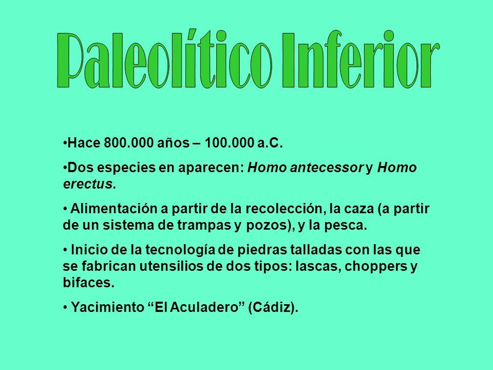 Paleolítico Inferior Hace 800.000 años – 100.000 a.C.