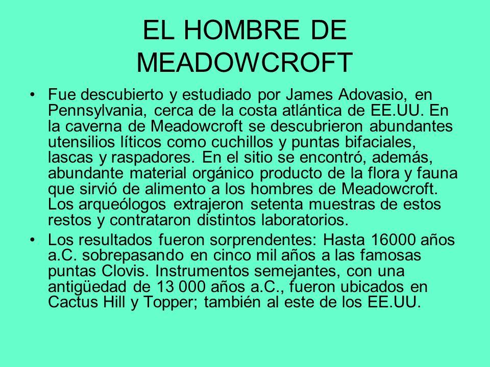 EL HOMBRE DE MEADOWCROFT
