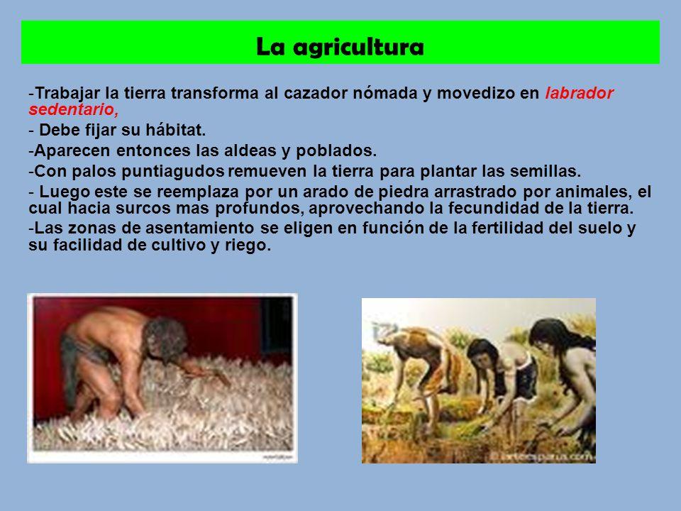 La agricultura Trabajar la tierra transforma al cazador nómada y movedizo en labrador sedentario, Debe fijar su hábitat.
