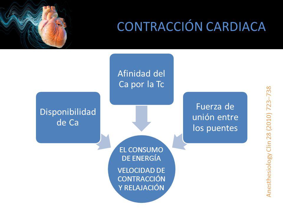 CONTRACCIÓN CARDIACA Anesthesiology Clin 28 (2010) 723–738