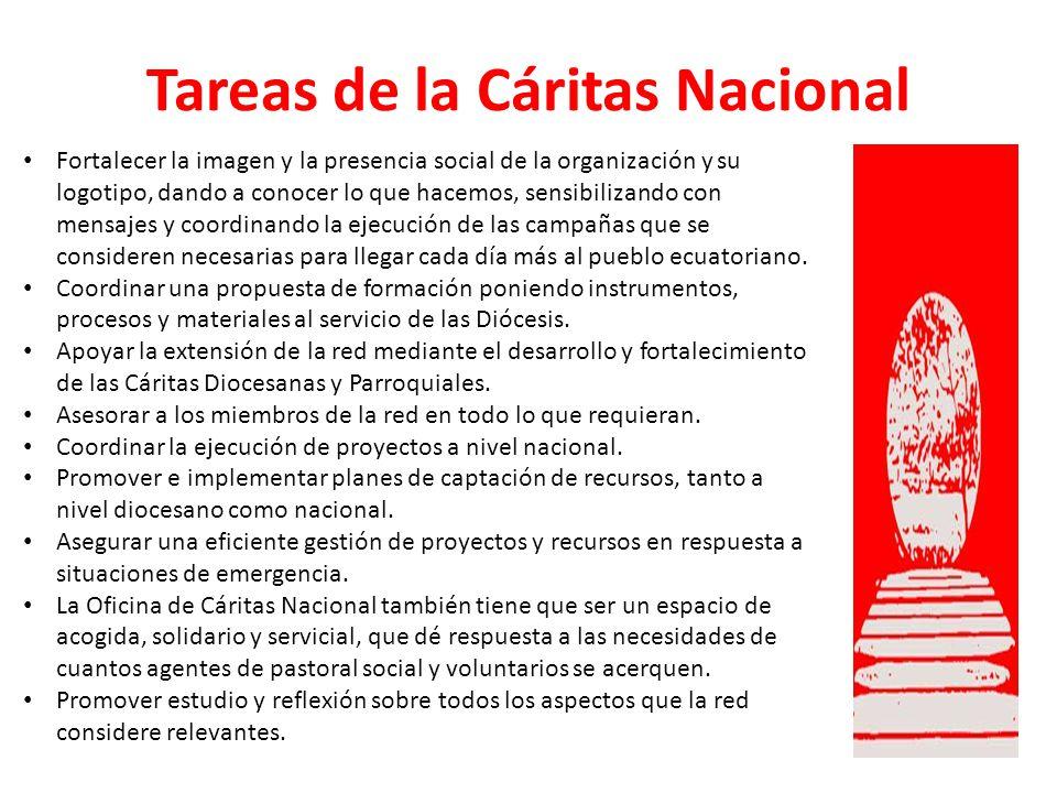 Tareas de la Cáritas Nacional