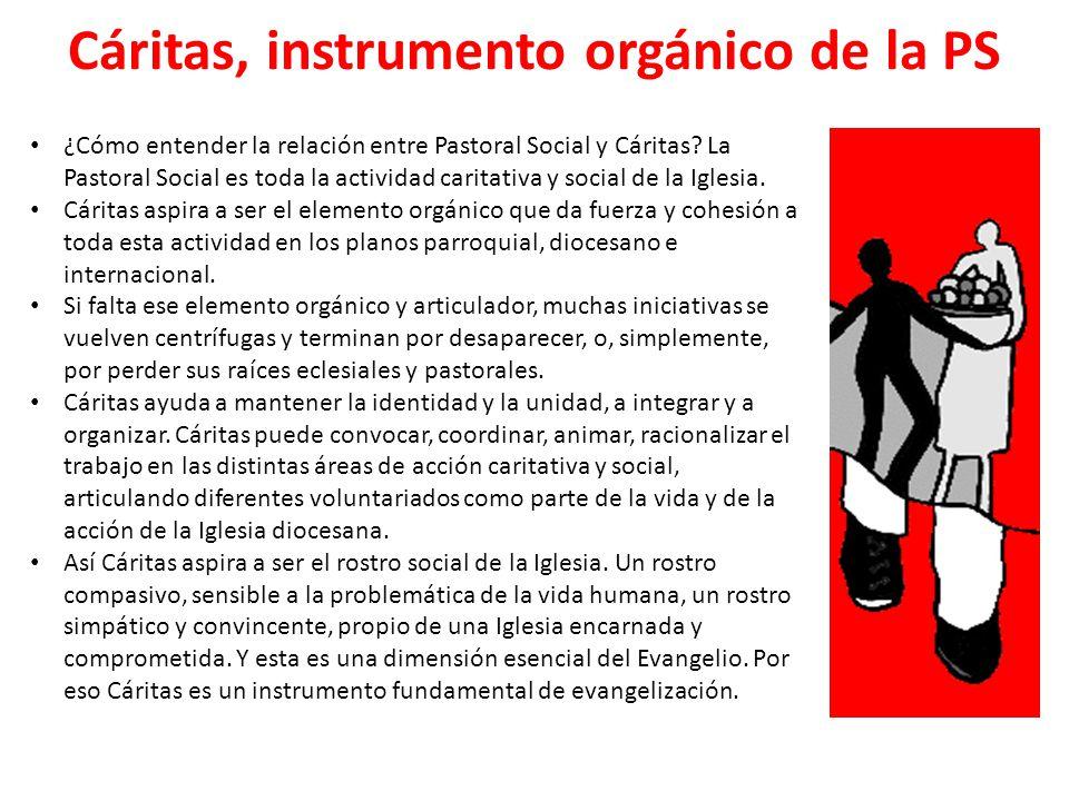Cáritas, instrumento orgánico de la PS